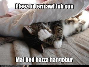 funny-pictures-mai-hed-hazza-hangobur