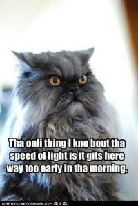 funny-pictures-tha-onli-thing-i-kno-bout-tha-speed-of-light-is-it-gits-here-way-too-early-in-tha-morning